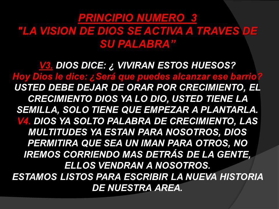 LA VISION DE DIOS SE ACTIVA A TRAVES DE SU PALABRA