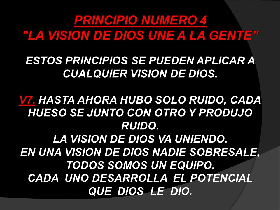 PRINCIPIO NUMERO 4 LA VISION DE DIOS UNE A LA GENTE