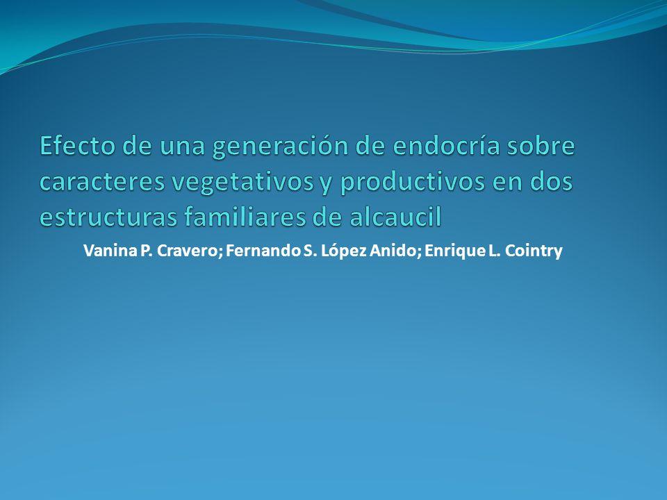 Vanina P. Cravero; Fernando S. López Anido; Enrique L. Cointry