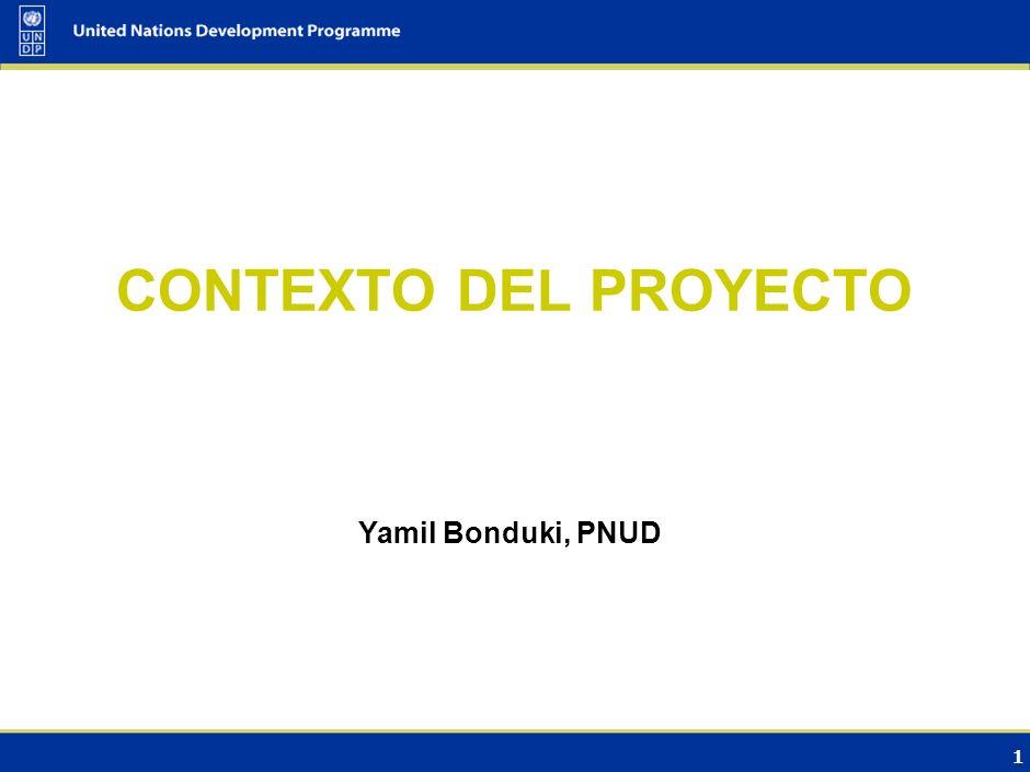 CONTEXTO DEL PROYECTO Yamil Bonduki, PNUD