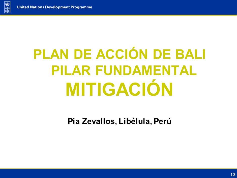 PLAN DE ACCIÓN DE BALI PILAR FUNDAMENTAL Pia Zevallos, Libélula, Perú