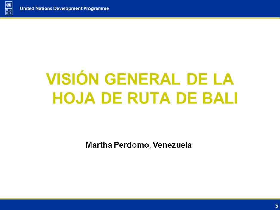VISIÓN GENERAL DE LA HOJA DE RUTA DE BALI Martha Perdomo, Venezuela