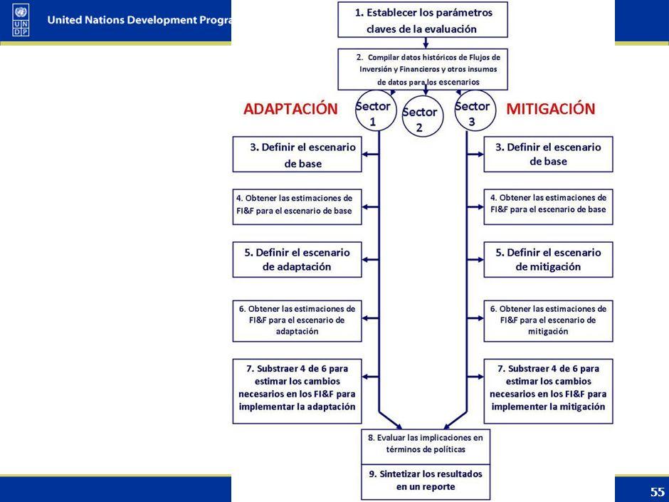 Summarize proceeding & outcomes