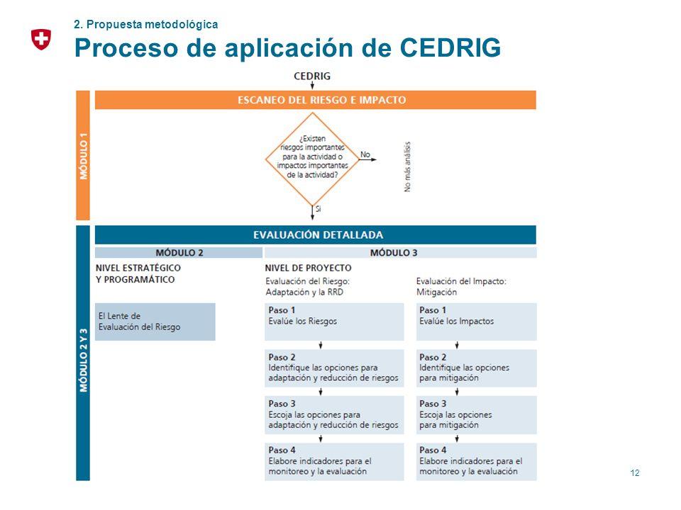 Proceso de aplicación de CEDRIG