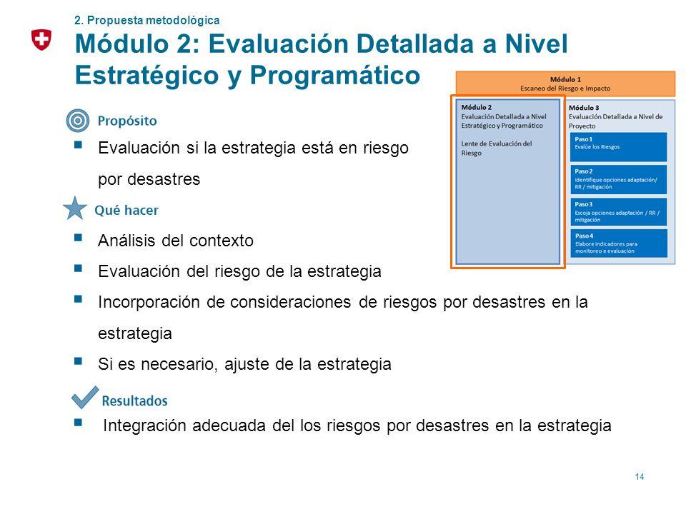 Módulo 2: Evaluación Detallada a Nivel Estratégico y Programático