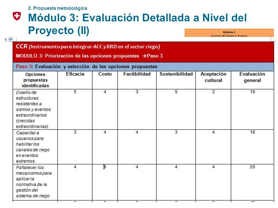 Módulo 3: Evaluación Detallada a Nivel del Proyecto (II)
