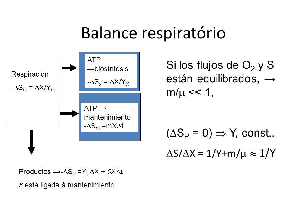 Balance respiratório Respiración. -DSQ = DX/YQ. ATP biosíntesis. -DSx = DX/YX. ATP  mantenimiento.