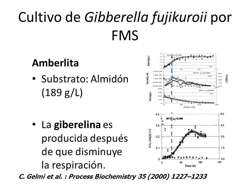 Cultivo de Gibberella fujikuroii por FMS