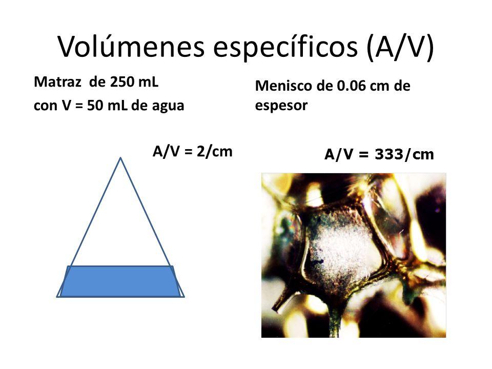 Volúmenes específicos (A/V)