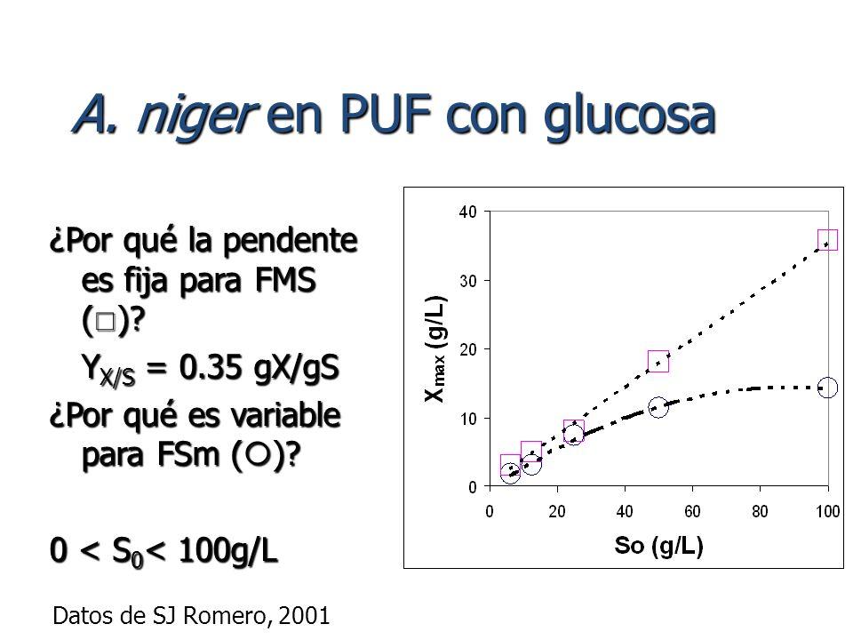 A. niger en PUF con glucosa