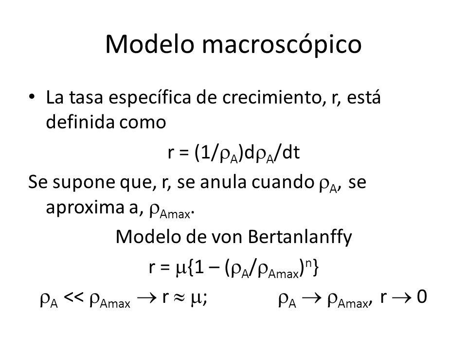 Modelo macroscópico La tasa específica de crecimiento, r, está definida como. r = (1/rA)drA/dt.