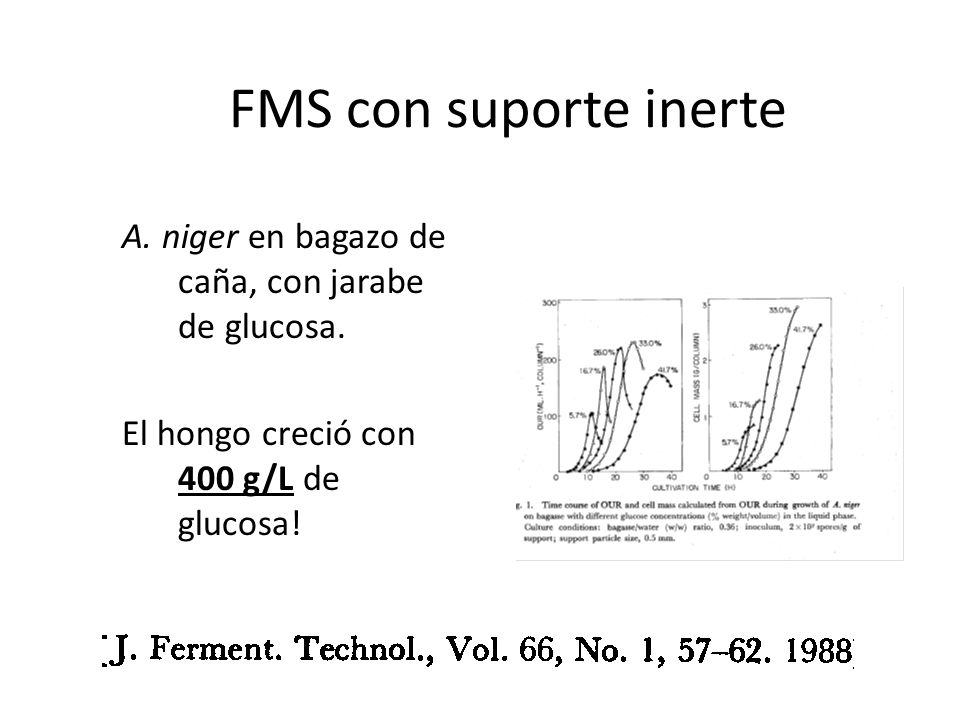 FMS con suporte inerte A. niger en bagazo de caña, con jarabe de glucosa.