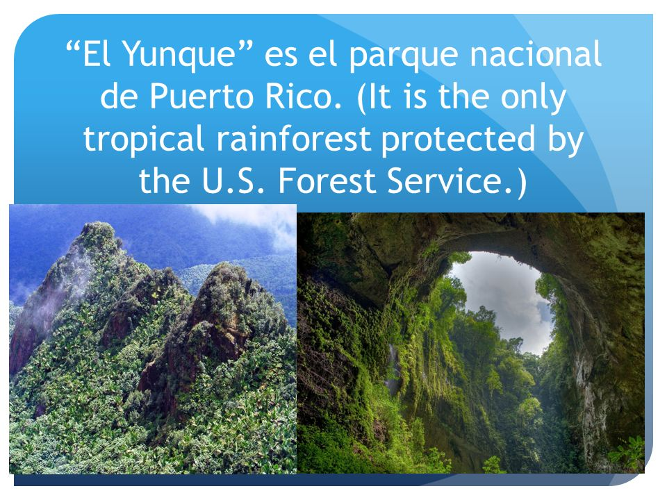 El Yunque es el parque nacional de Puerto Rico