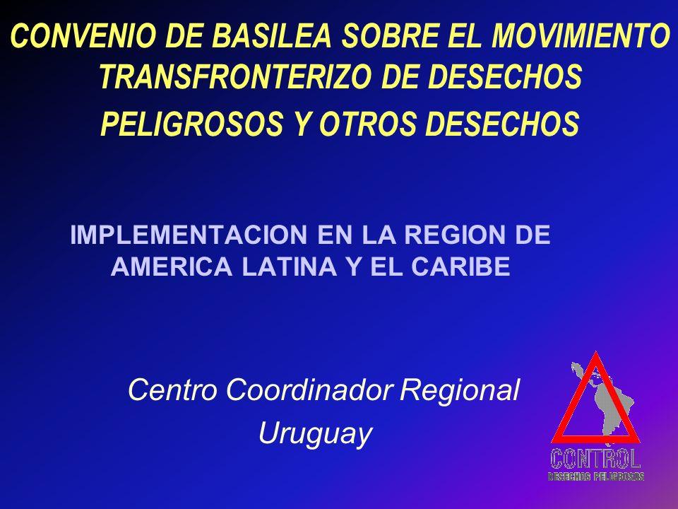 IMPLEMENTACION EN LA REGION DE AMERICA LATINA Y EL CARIBE