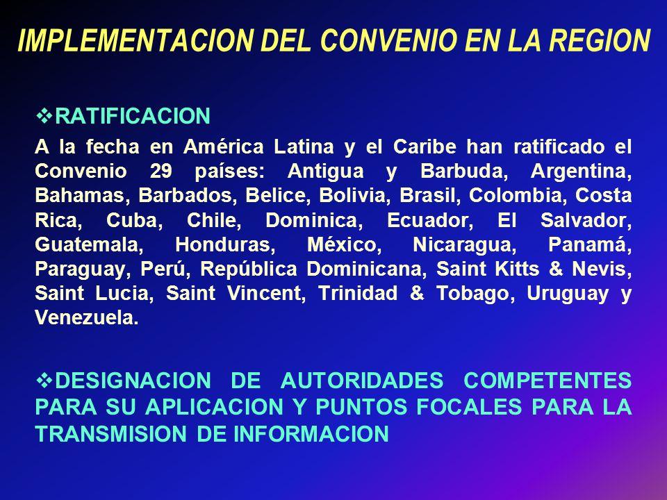 IMPLEMENTACION DEL CONVENIO EN LA REGION