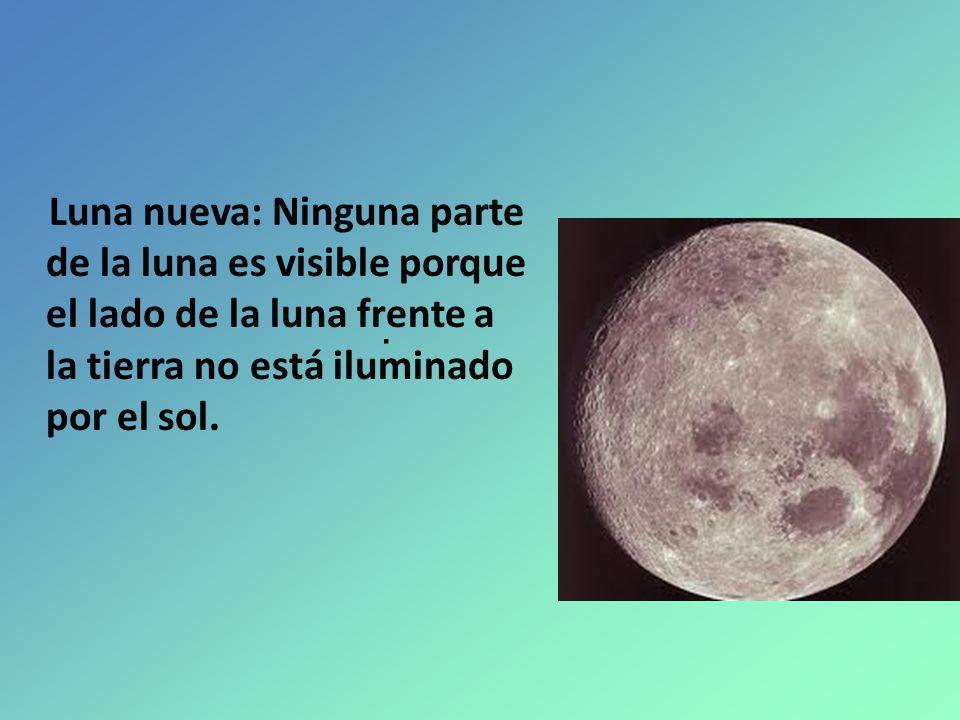 Luna nueva: Ninguna parte de la luna es visible porque el lado de la luna frente a la tierra no está iluminado por el sol.