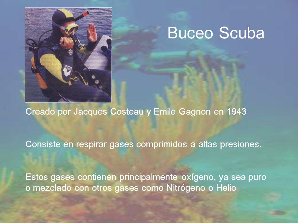 Buceo Scuba Creado por Jacques Costeau y Emile Gagnon en 1943
