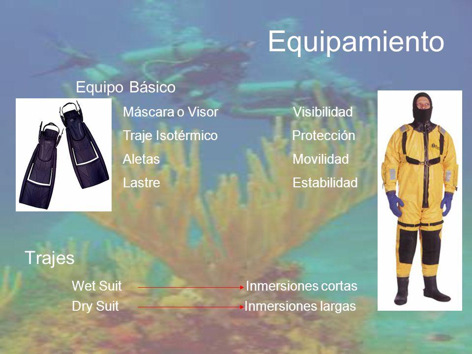 Equipamiento Trajes Wet Suit Inmersiones cortas Equipo Básico