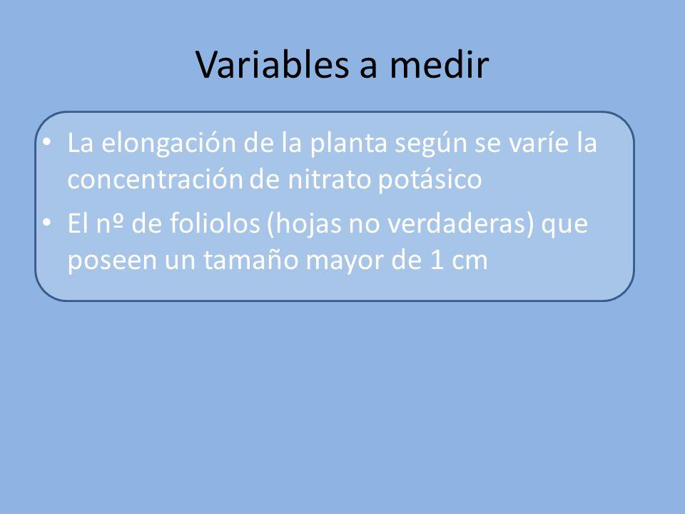 Variables a medir La elongación de la planta según se varíe la concentración de nitrato potásico.