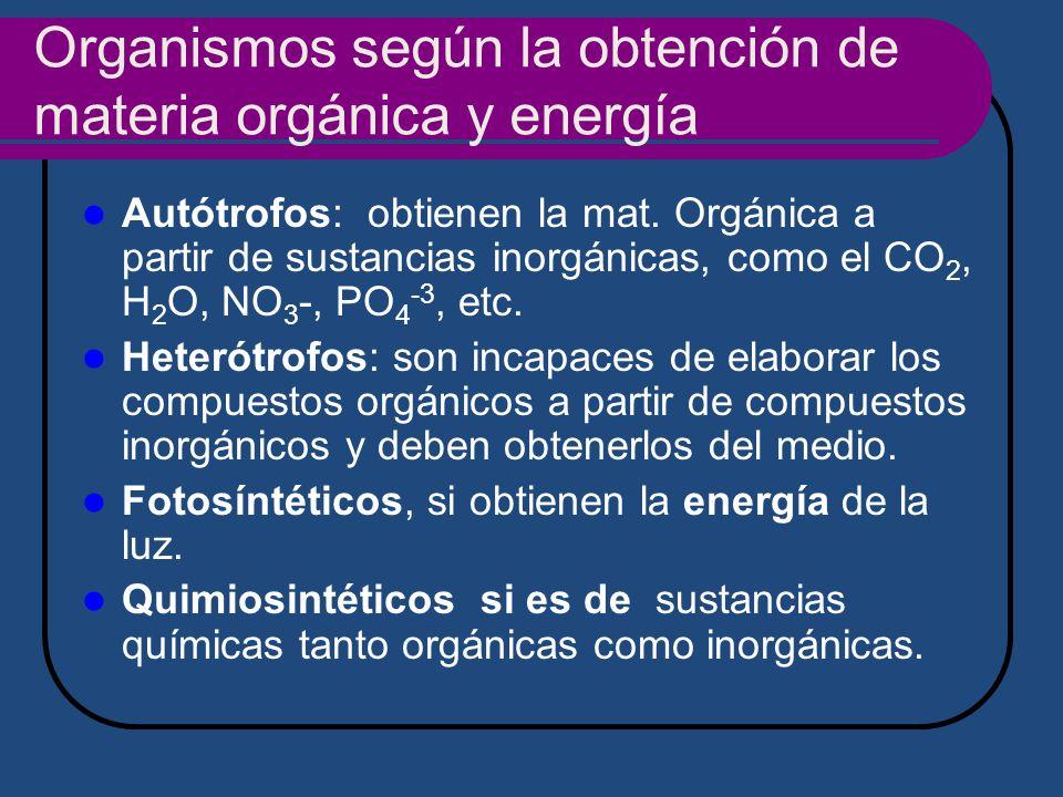 Organismos según la obtención de materia orgánica y energía