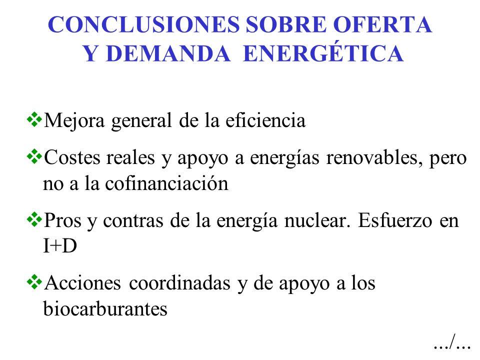 CONCLUSIONES SOBRE OFERTA Y DEMANDA ENERGÉTICA