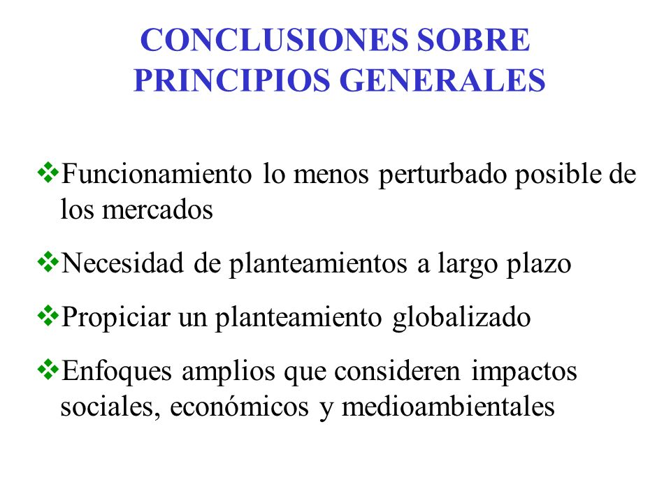 CONCLUSIONES SOBRE PRINCIPIOS GENERALES