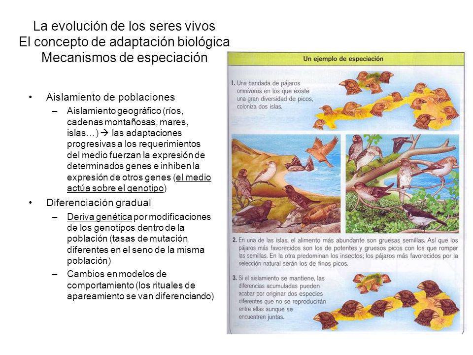 La evolución de los seres vivos El concepto de adaptación biológica Mecanismos de especiación