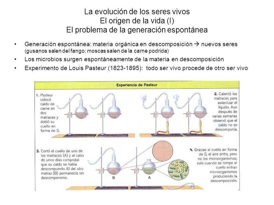 La evolución de los seres vivos El origen de la vida (I) El problema de la generación espontánea