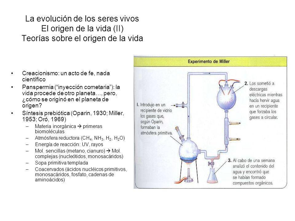 La evolución de los seres vivos El origen de la vida (II) Teorías sobre el origen de la vida
