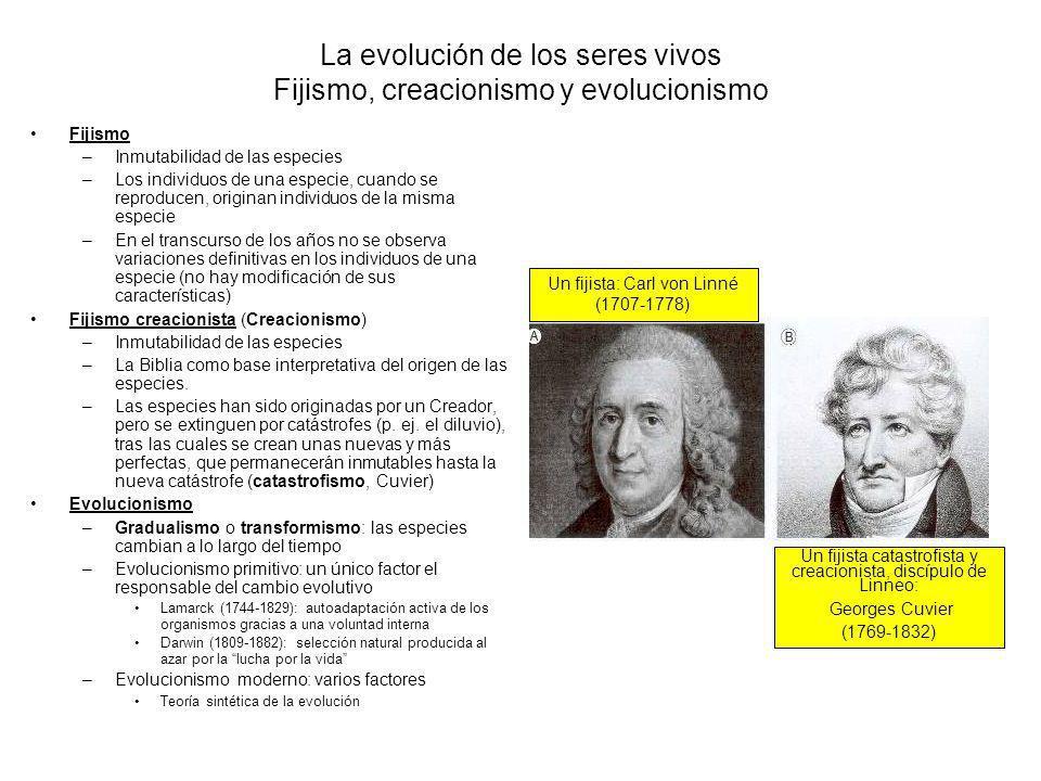 La evolución de los seres vivos Fijismo, creacionismo y evolucionismo