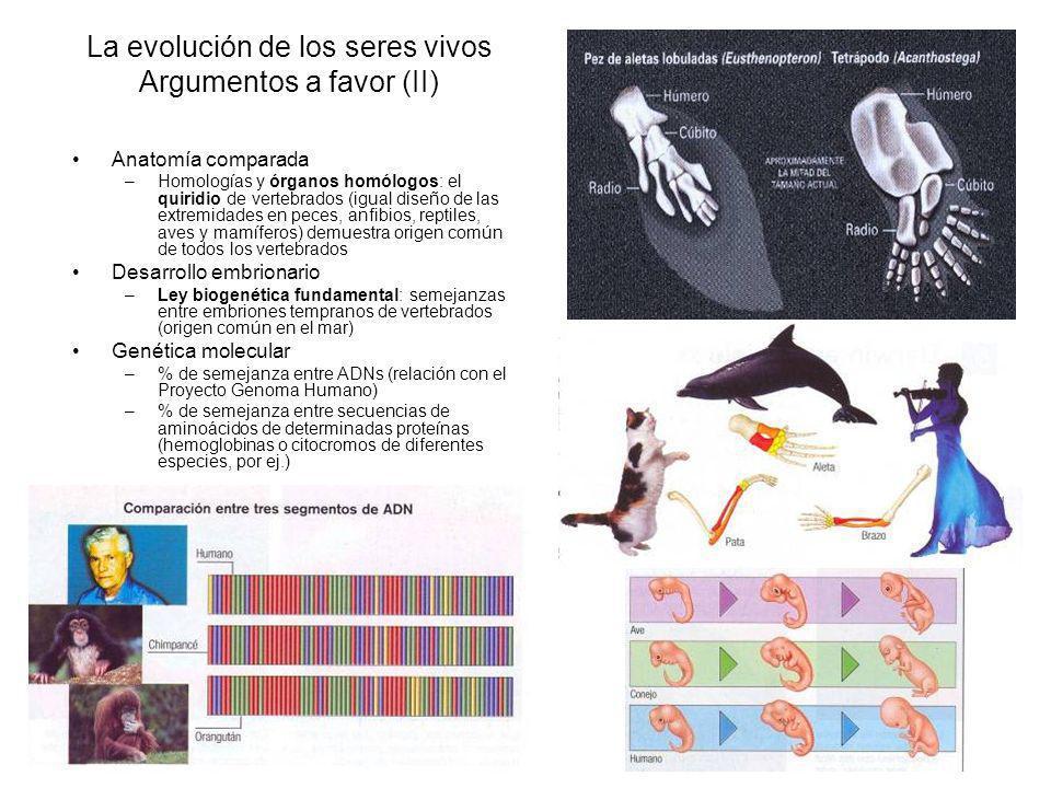La evolución de los seres vivos Argumentos a favor (II)