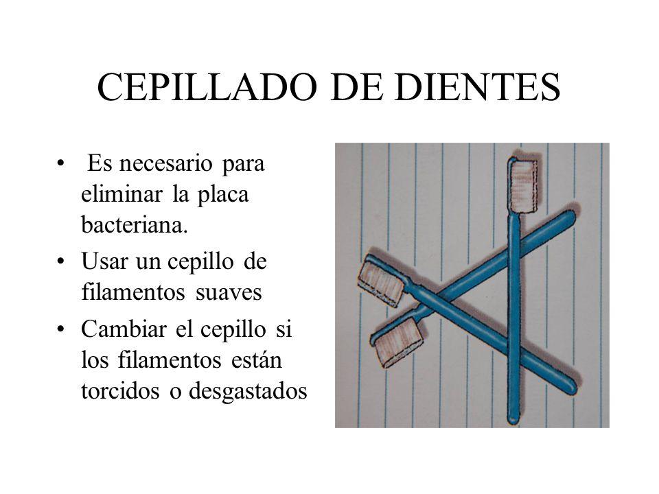 CEPILLADO DE DIENTES Es necesario para eliminar la placa bacteriana.