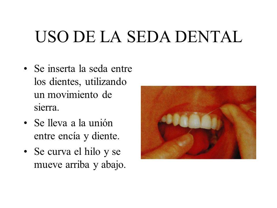 USO DE LA SEDA DENTAL Se inserta la seda entre los dientes, utilizando un movimiento de sierra. Se lleva a la unión entre encía y diente.