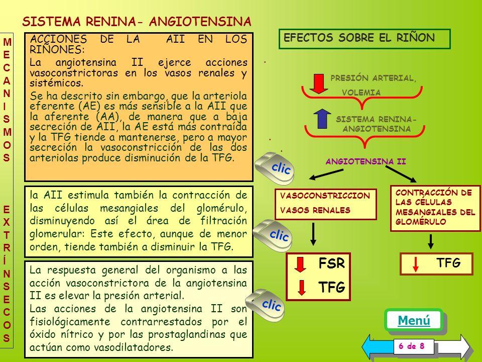 SISTEMA RENINA- ANGIOTENSINA
