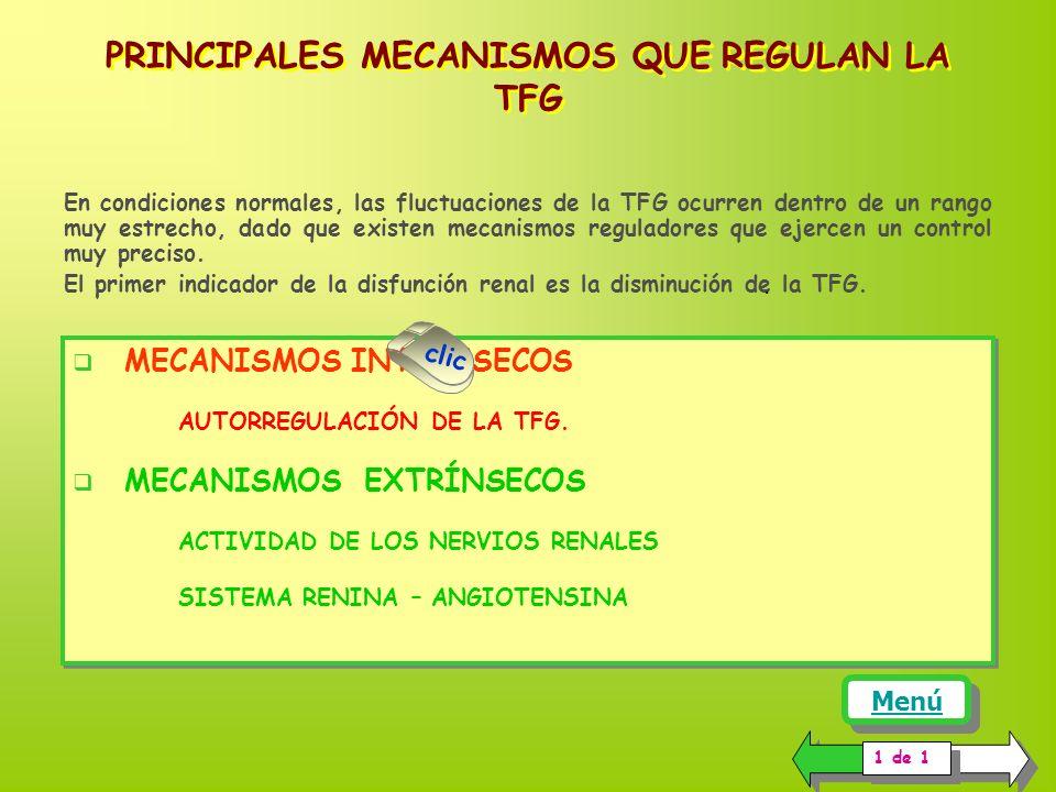 PRINCIPALES MECANISMOS QUE REGULAN LA TFG