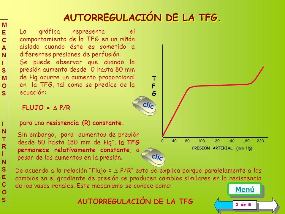 AUTORREGULACIÓN DE LA TFG.