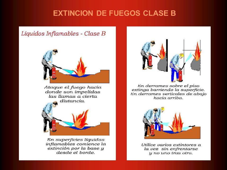EXTINCION DE FUEGOS CLASE B