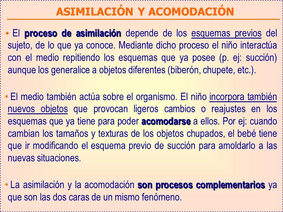 ASIMILACIÓN Y ACOMODACIÓN