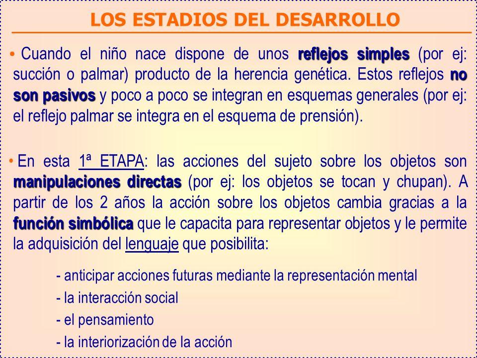 LOS ESTADIOS DEL DESARROLLO
