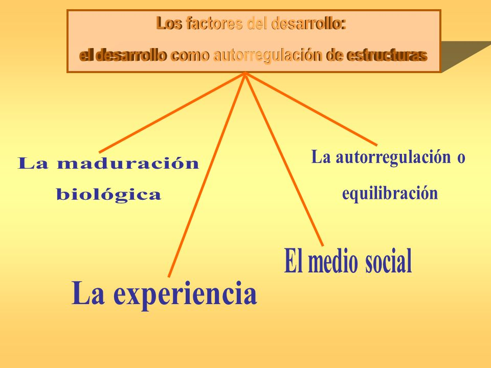 Los factores del desarrollo: