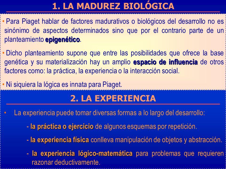 1. LA MADUREZ BIOLÓGICA 2. LA EXPERIENCIA