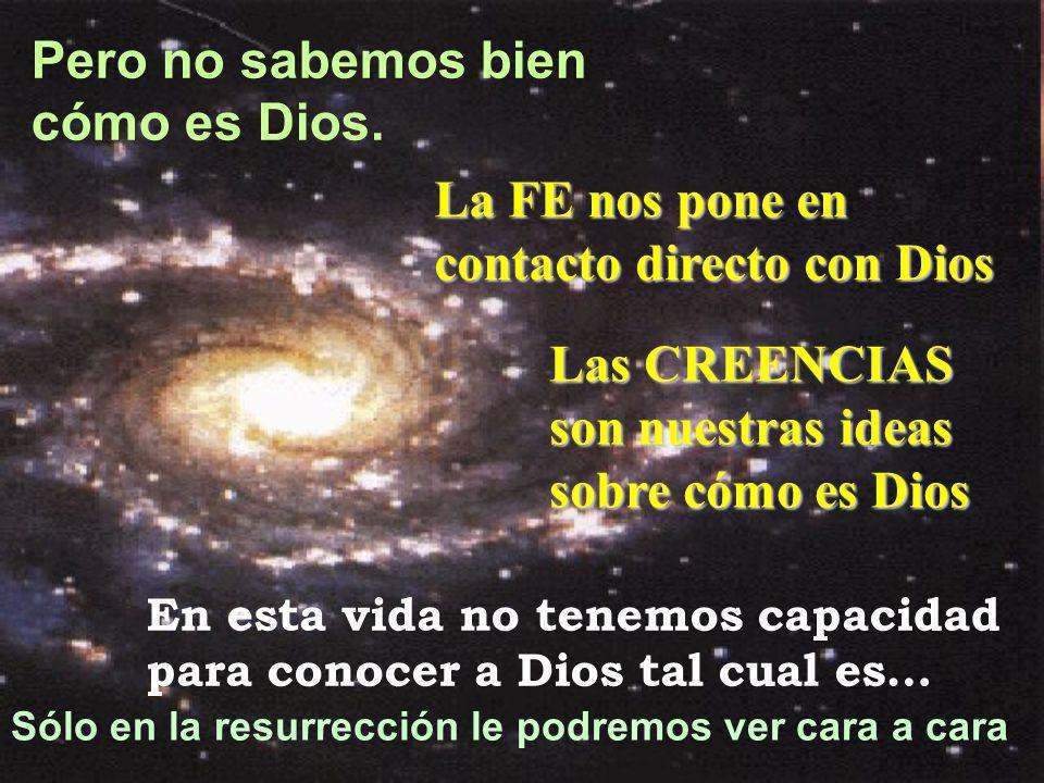 La FE nos pone en contacto directo con Dios