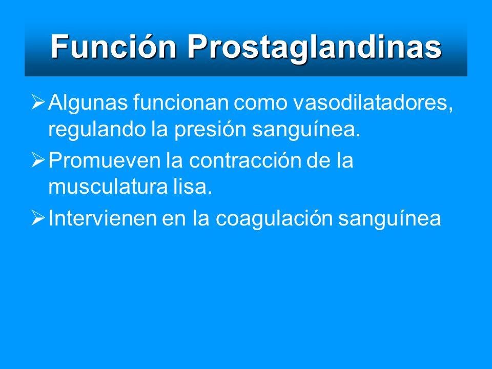 Función Prostaglandinas