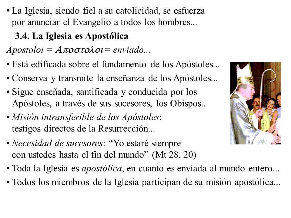 La Iglesia, siendo fiel a su catolicidad, se esfuerza por anunciar el Evangelio a todos los hombres...