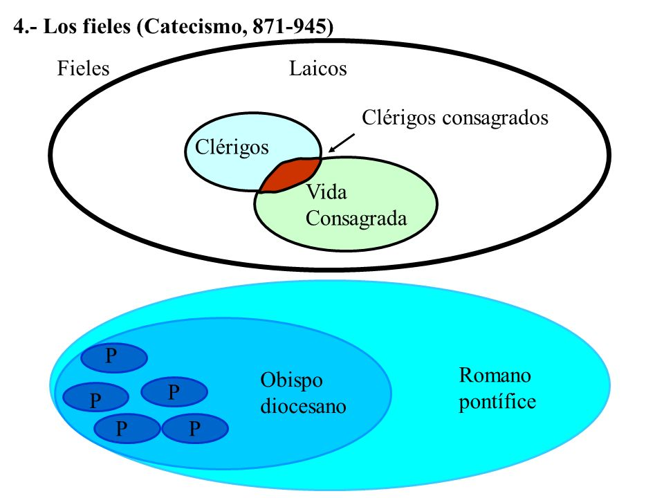 4.- Los fieles (Catecismo, 871-945)