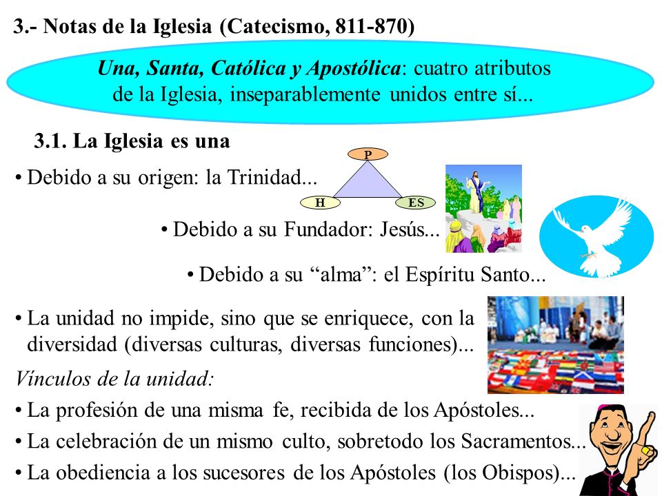 3.- Notas de la Iglesia (Catecismo, 811-870)