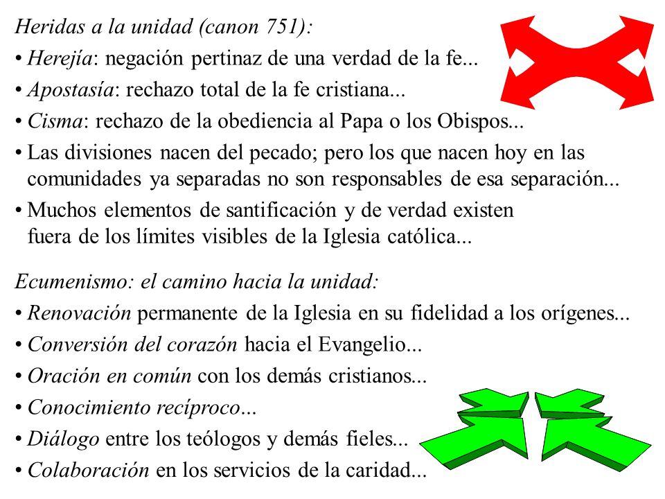 Heridas a la unidad (canon 751):