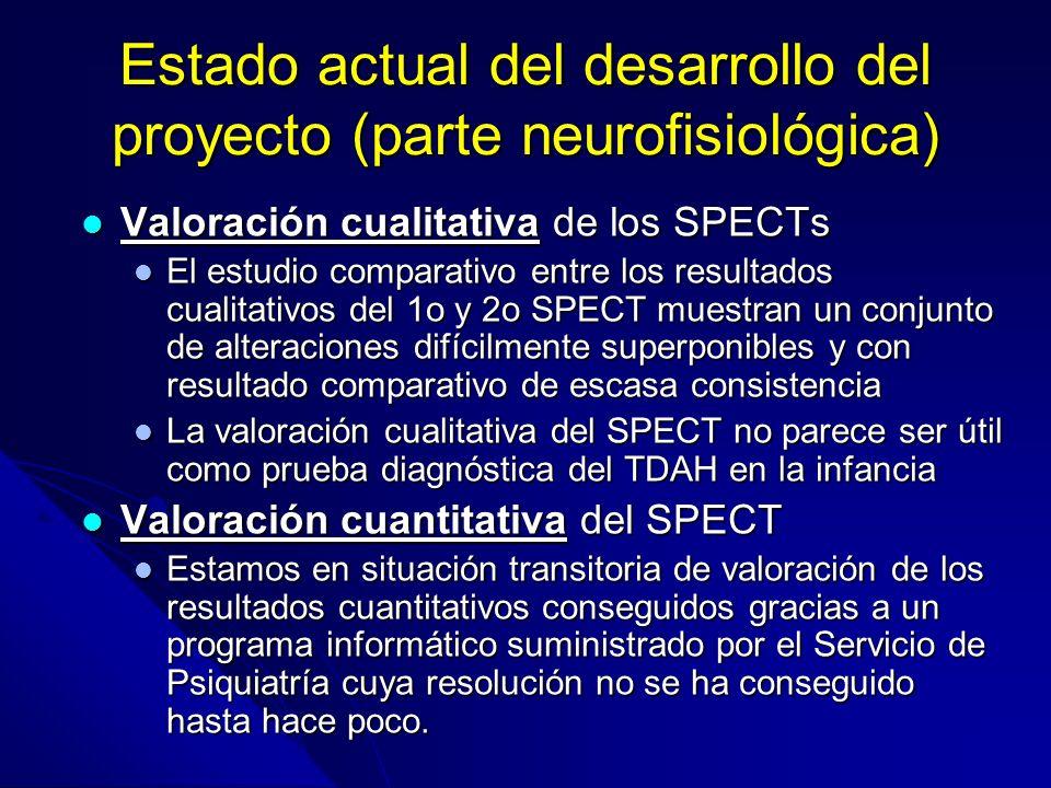 Estado actual del desarrollo del proyecto (parte neurofisiológica)
