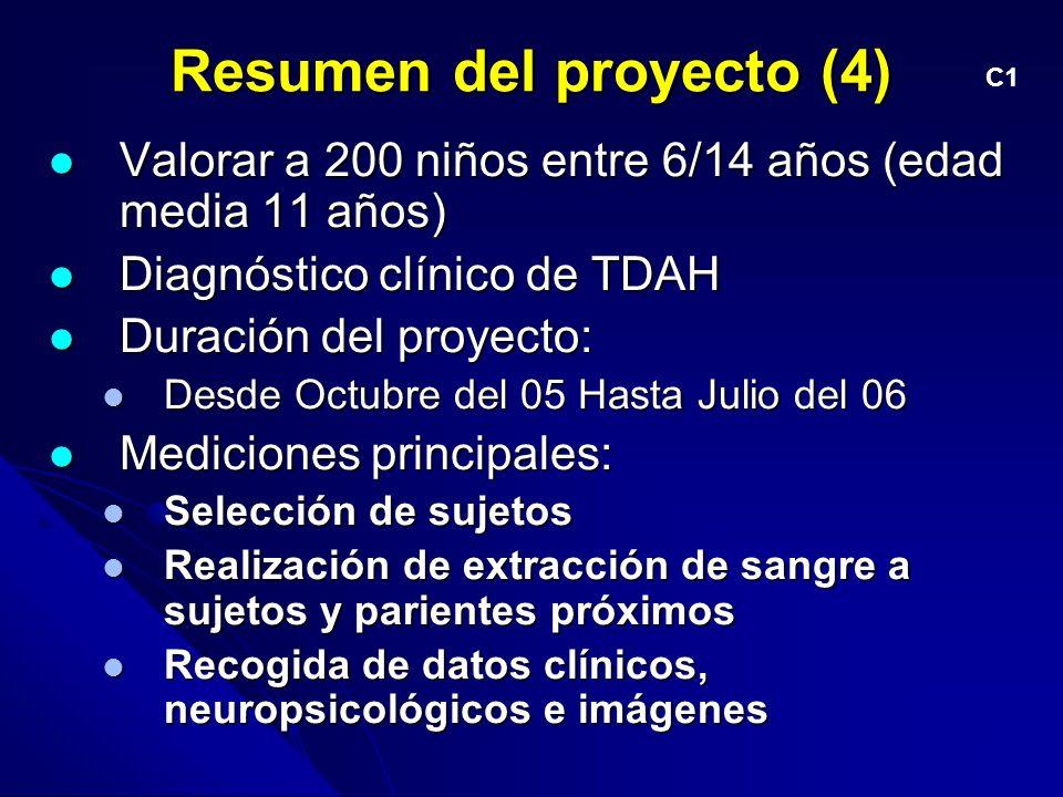 Resumen del proyecto (4)