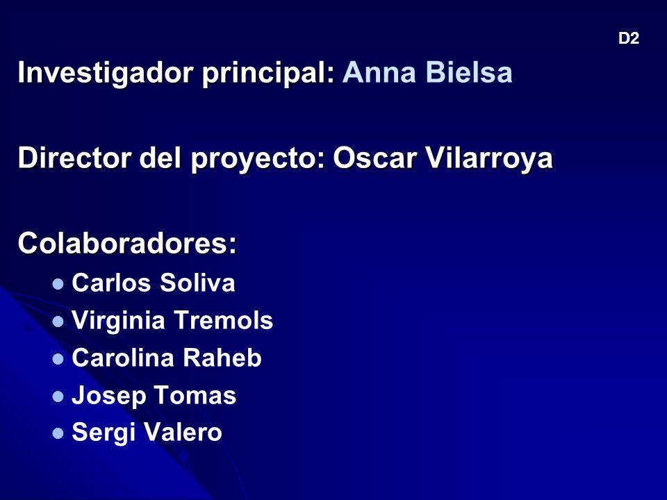 Investigador principal: Anna Bielsa
